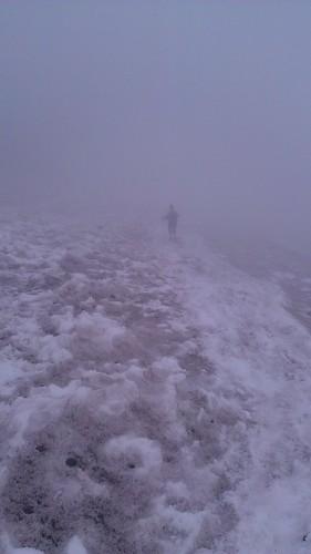 Whiteout Mount Rainier
