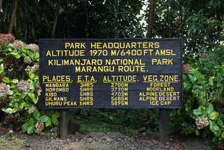 Getting a sense of the checkpoints ahead (Mt. Kilimanjaro, Tanzania)