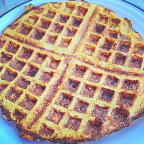 Savory Cauliflower Waffle