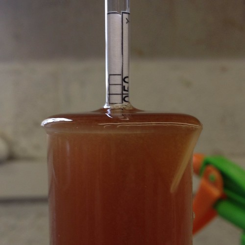 AG#128 - Belgian Hop Burst, 1051.5 going for 1048.