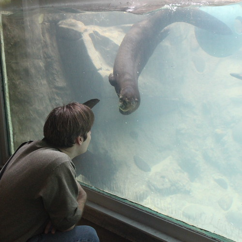 Andrew and the giant otter