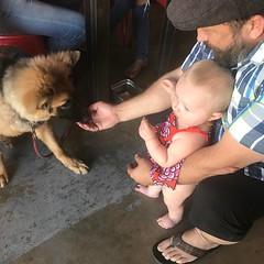 Can't ever pass up a chance to meet a puppy!