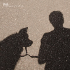 tasku and me shadows crop
