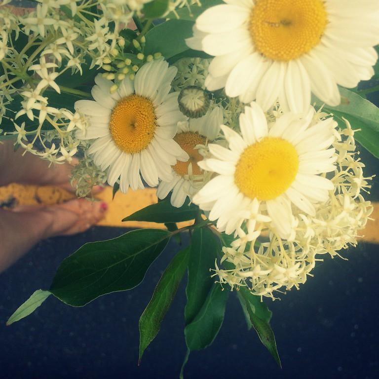 {wildflowers} 1:108