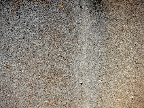 de nouvelles photos aériennes des marais salants de Guérande 14466297352_3bd8fd59ce