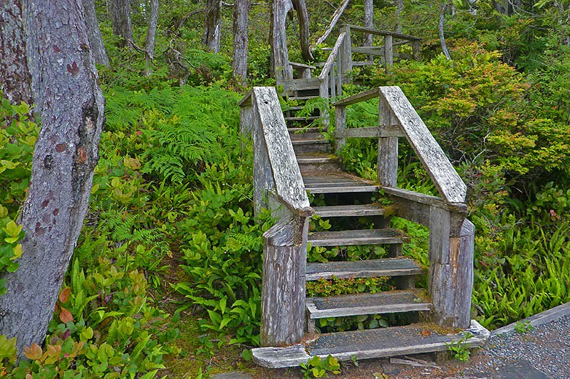 Lighthouse Loop, Wild Pacific Trail, Ucluelet, Vancouver Island, British Columbia, Canada