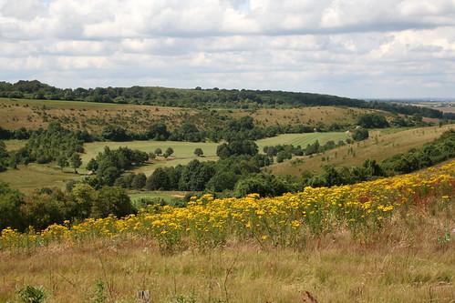 Valley near Shoreham