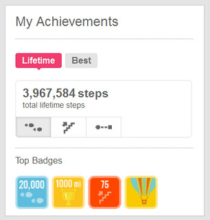 8.11 fitbit one year