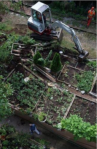 Destroying community garden