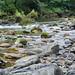 Río Trubia II
