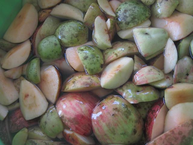 Preserving Apples 3