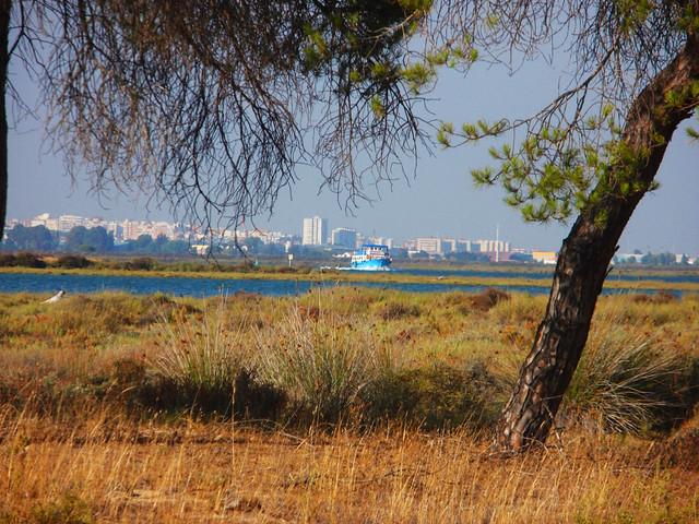 Header of Huelva