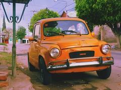 zastava 750(0.0), automobile(1.0), vehicle(1.0), fiat 600(1.0), subcompact car(1.0), city car(1.0), compact car(1.0), antique car(1.0), vintage car(1.0), land vehicle(1.0),