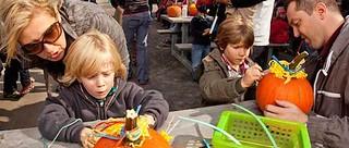 Fall Pumpkin Hunt (Mont-Sainte-Anne)