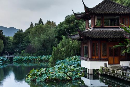 china sunrise peaceful westlake hangzhou xihu zhejiang lotusinthebreeze