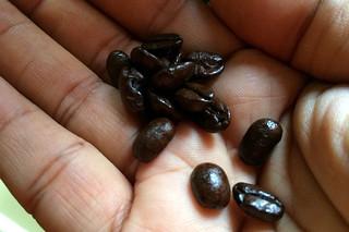 Peet's Coffee Major Dickason's Blend - Whole Beans