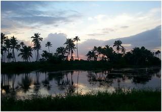 Reflections on Twilight