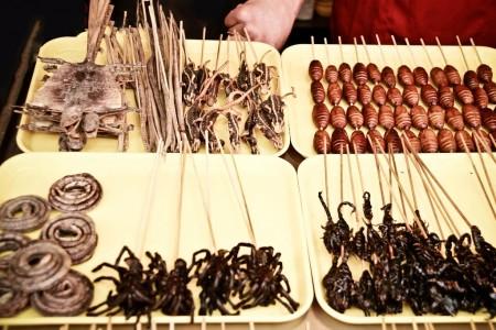 Žáby, hadi, škorpioni, kobylky, potkani, pavouci – to vše se může objevit jako vybraná pochoutka na talíři během cest po Asii a dalších kontinentech. Některé speciality jsou jen pro otrlé, na jiných si pochutnáte.