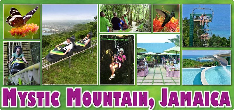 Rainforest Adventures Mystic Mountain Jamaica