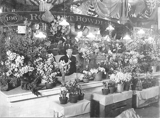 Photograph of an Attractive Flower Stand in Center Market, 02/18/1915