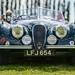 Jaguar by apipol@ymail.com