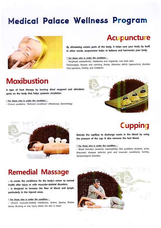 oriental treatment - medical palace korea2