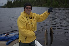 bass(0.0), cod(0.0), angling(0.0), fish(1.0), fishing(1.0), recreation(1.0), outdoor recreation(1.0), recreational fishing(1.0), jigging(1.0),