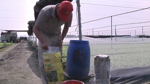 少量多次施肥可減少肥料流失