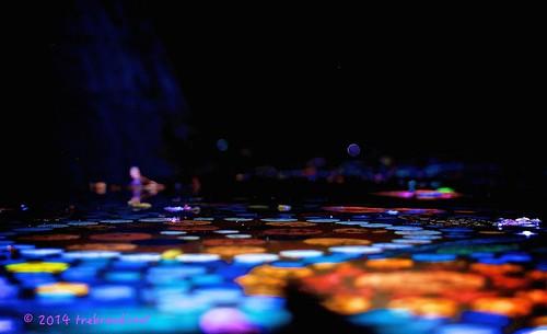 nightphotography light colour art plane work long exposure flat bright tortoise ring rainy land aboriginal bora indigenous binkinba