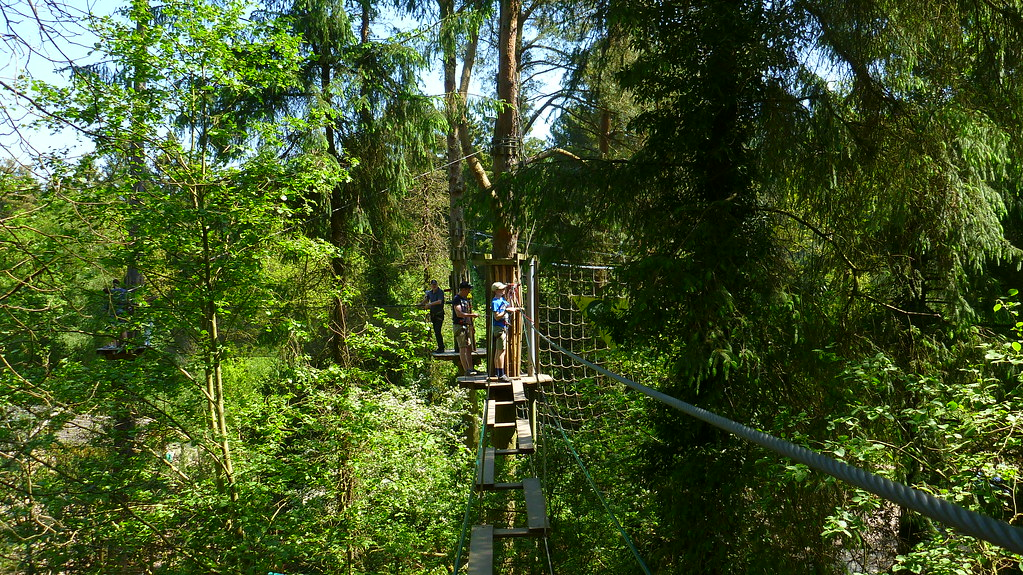 goape, go ape, forest of dean, mallards pike lake