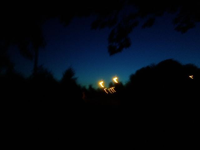 PIC_2906