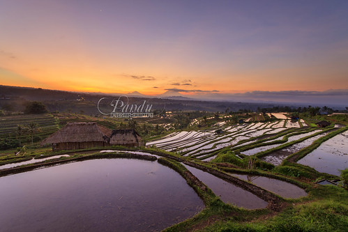 bali black reflection sunrise indonesia landscape photography tour village no hut filter card guide ricefield creditcard jatiluwih tabanan baliphotography nakedlens balitravelphotography baliphotographytour baliphotographyguide
