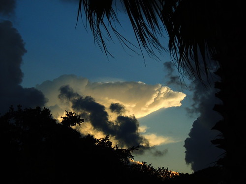 sunset summer sun storm rain weather silhouette clouds palms nikon flickr wind florida coolpix thunder bradenton manateecounty p510 mullhaupt cloudsstormssunsetssunrises jimmullhaupt