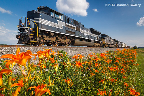 railroad flowers orange ns railway trains norfolksouthern newyorkcentral bellevueohio heritageunit brandontownley nsheritage