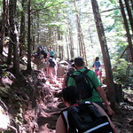 Crowded Chief Trail