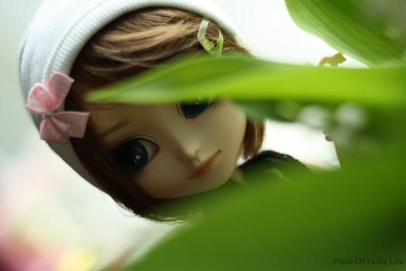Behind greenes