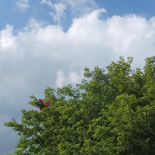 Danger Zone For Kites