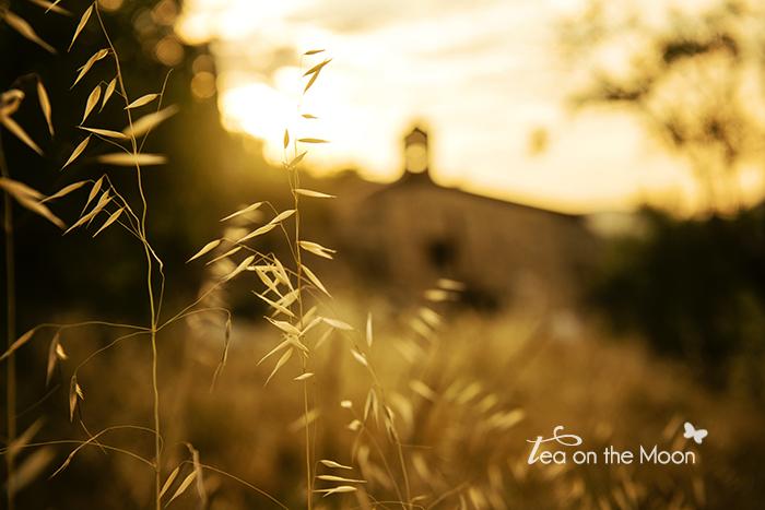 Inspira 2014 Siurana de Prades amanecer01