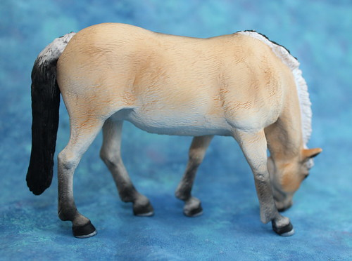 Walkaround of the Mojo Fun Fjord Mare and Comparison with CollectA Fjord Stallion 14689839236_493cc975d2