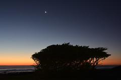 Pungarehu Twilight