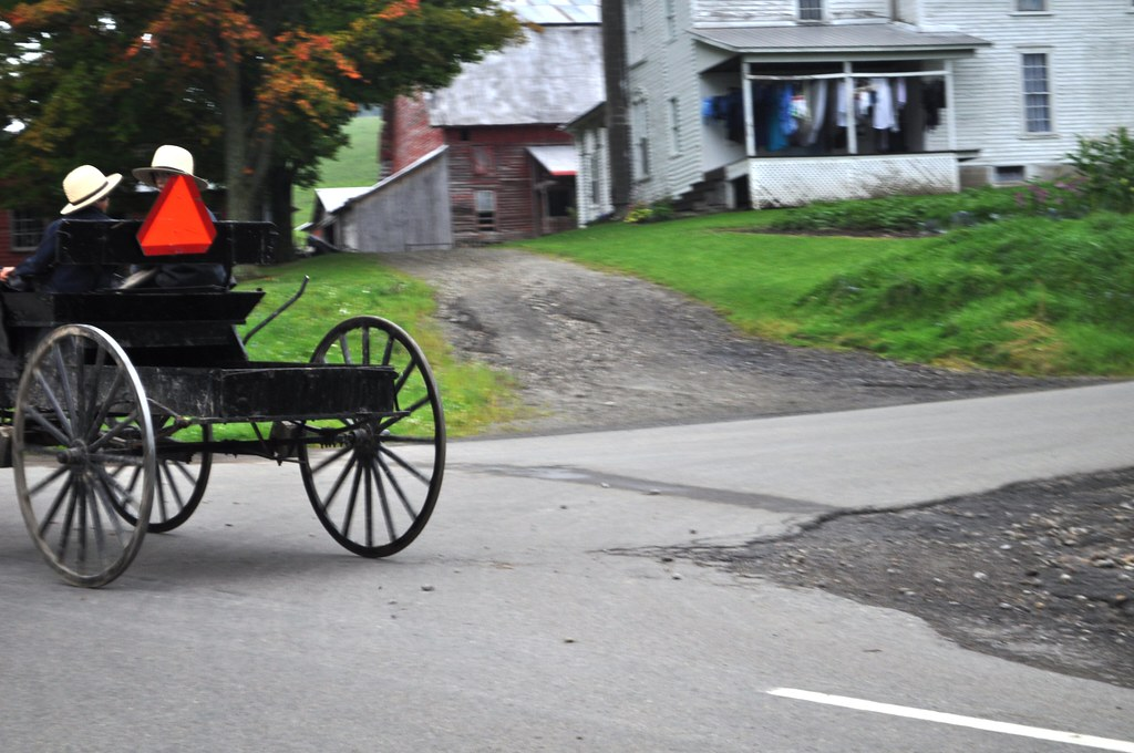 Amish Boys Drive a Horse-Drawn Buggy Along New York's Amish Trail