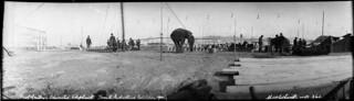 Professor Gentry's trained elephant act at the Toronto Industrial Exhibition / Spectacle de l'éléphant dressé du professeur Gentry à l'Exposition industrielle de Toronto