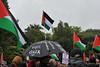 Gaza Protest, Dublin [02.08.14]