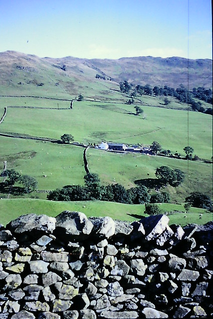 Something is taken from nature and something is given back. Building a dry stone wall, for example, provides a habitat