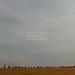 Rochers disposés en forme de voilier et orientés en fonction du soleil. Origines entre 1000 et 500 av. J.-C.