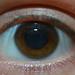Holly's Eye