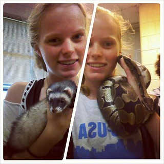 with the ferret and the snake