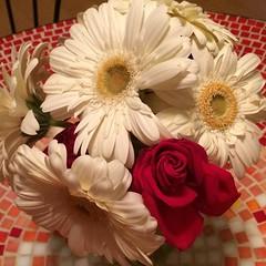 #bouquet #flowers