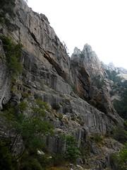 Descente de la Purcaraccia : la rive gauche vers la confluence Purcaraccia/Nura