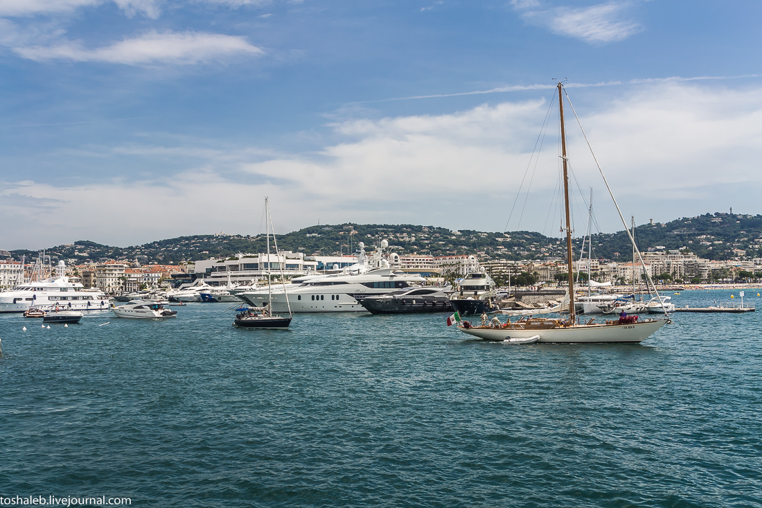 Cannes-61
